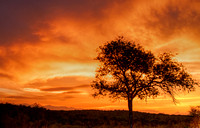 African Sunset2